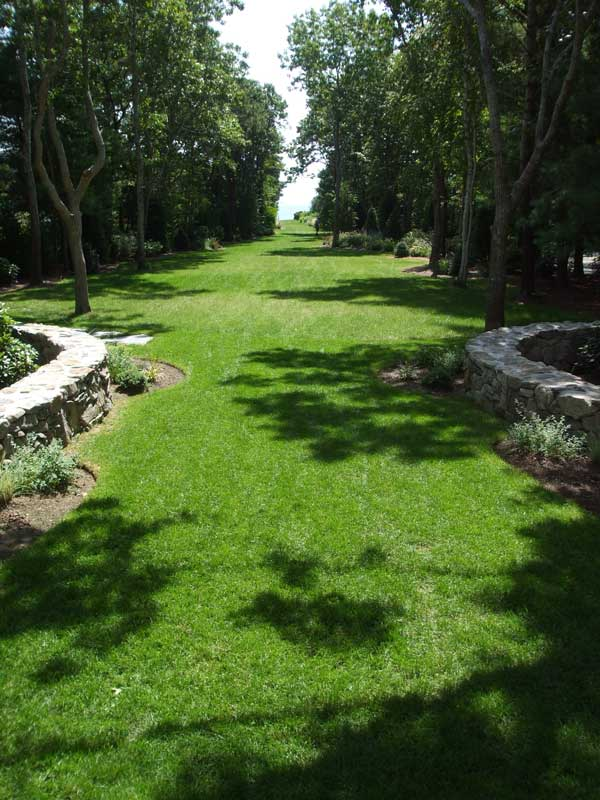 After---Lawn-Area.jpg