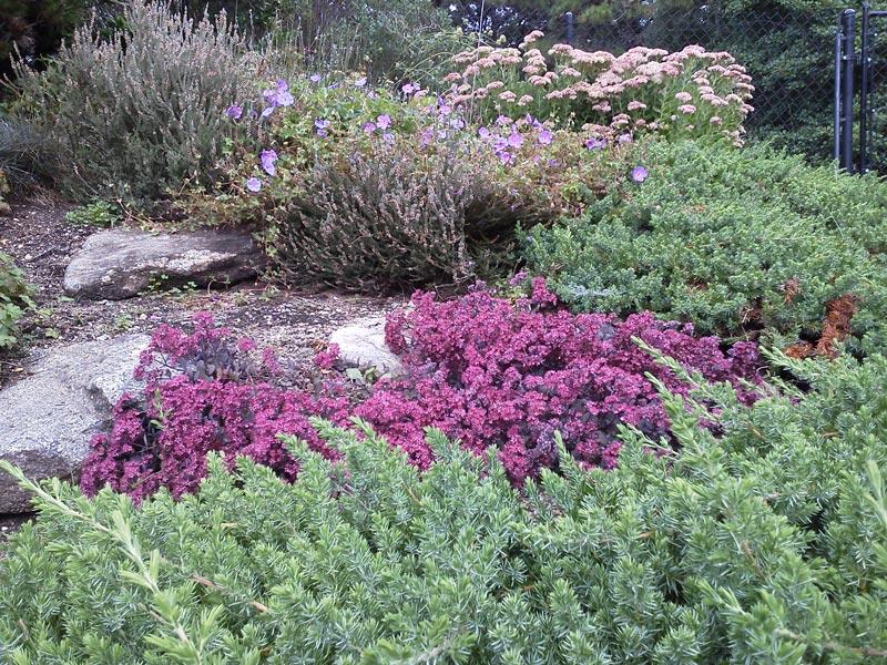 Rock-Border-Garden---Osterville,-MA.jpg
