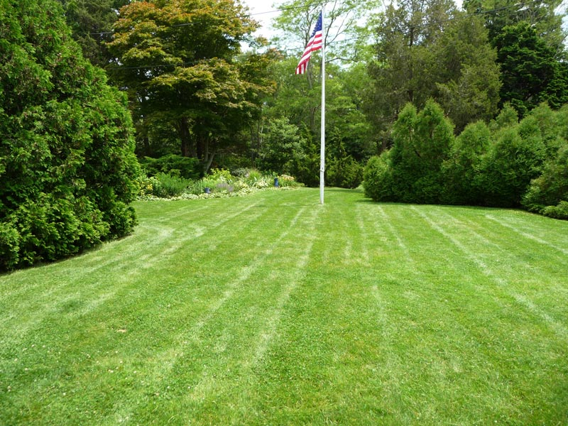 Organic-Lawn-with-Mature-Border-Plantings---Shadowlawn.jpg