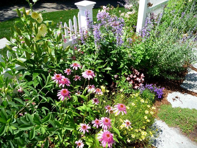Cottage-Garden.jpg