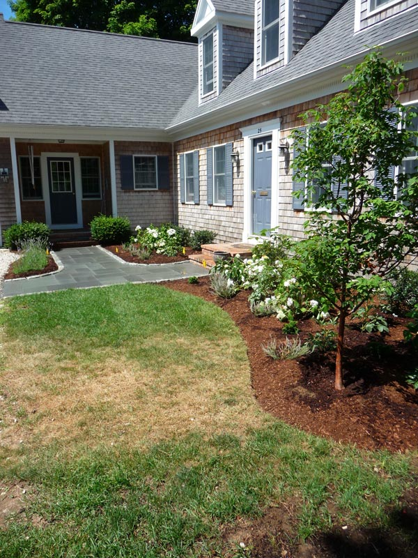 Walkway-_-Foundation-Plantings---Osterville,-MA.jpg