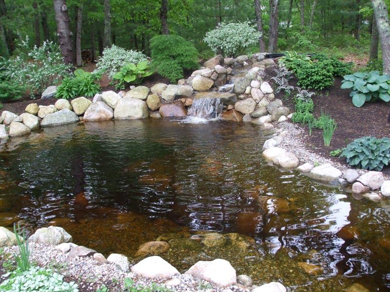 Koi-Fish-Pond---Cotuit,-MA.jpg