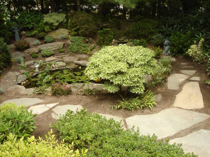 Pond-_-Plantings---Cotuit,-MA.jpg