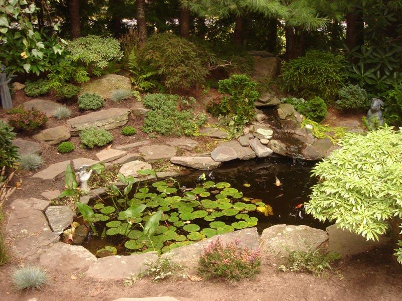 Fish-Pond---Cotuit,-MA.jpg