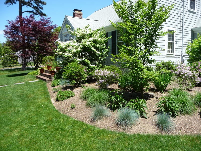 Foundation-Planting---Centerville,-MA.jpg