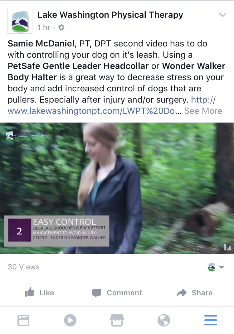 Canine Videos - Samie Seeley PT does as series of FB Live videos and Youtube series for canine/patient safety.