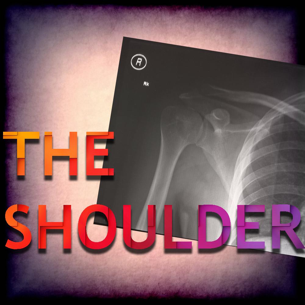 The SHOULDER.jpg