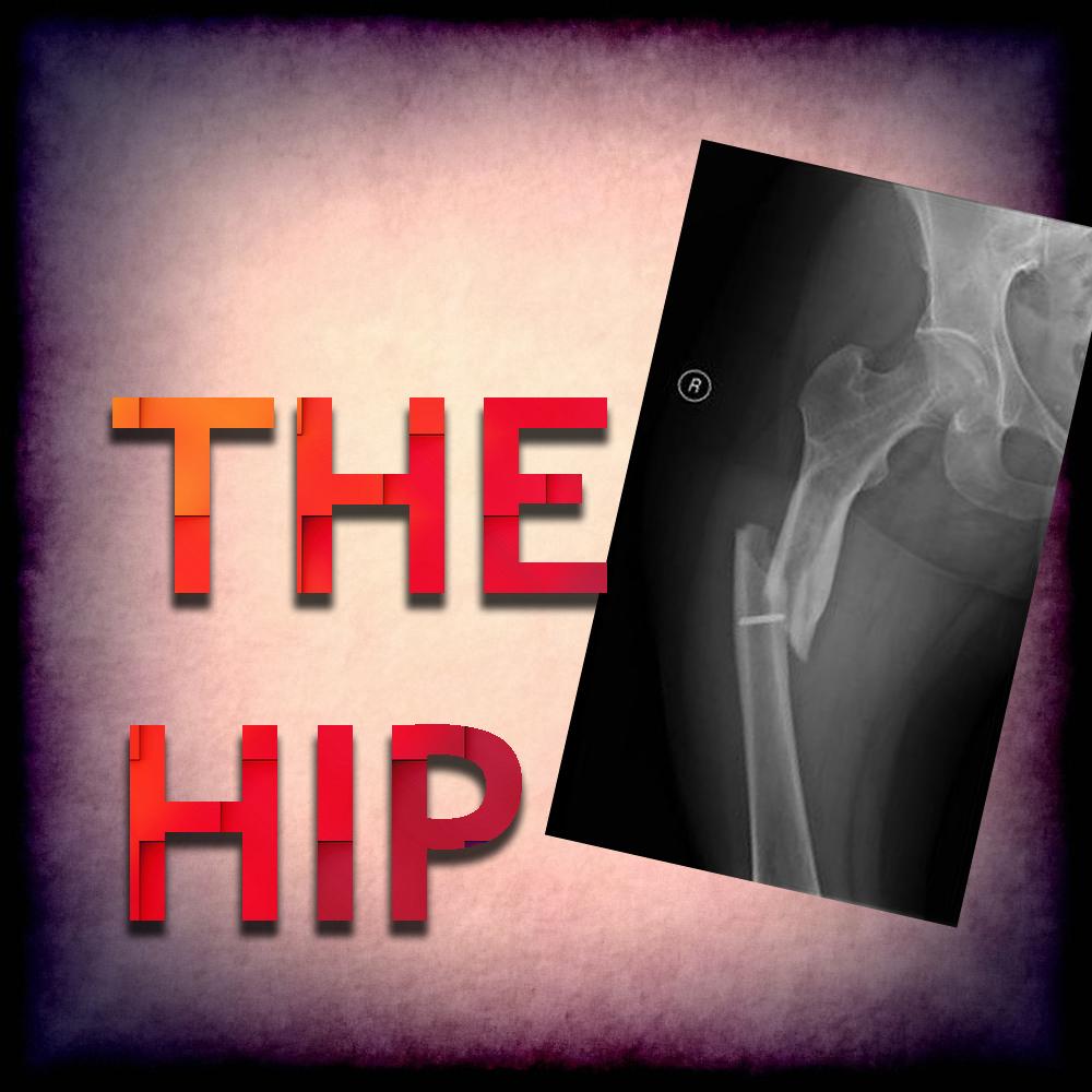 The hip.jpg