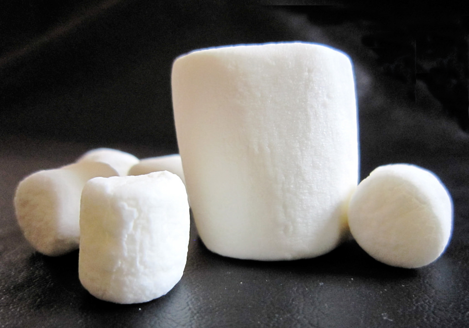 Can you resist eating the marshmallow?
