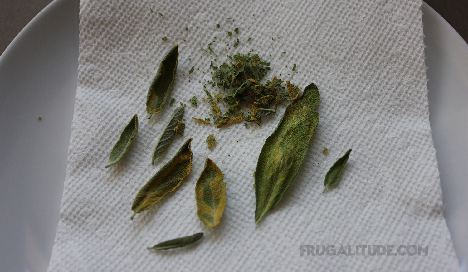 Herbs dried in microwave