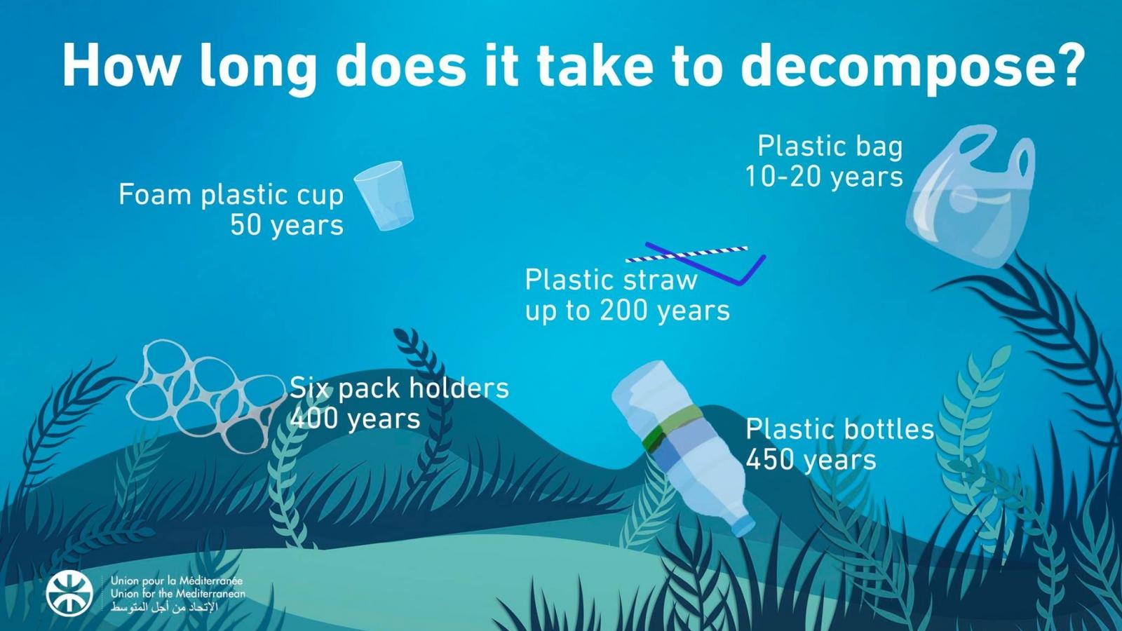 Plastic Decompose.jpg