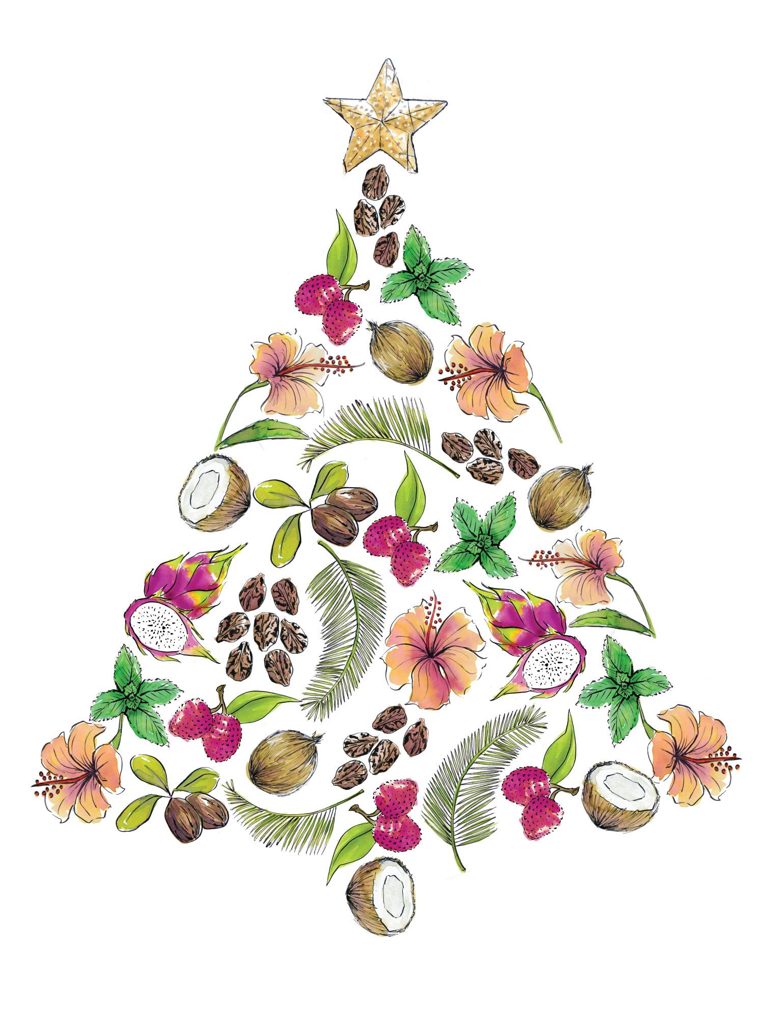 ingredient_tree.jpg