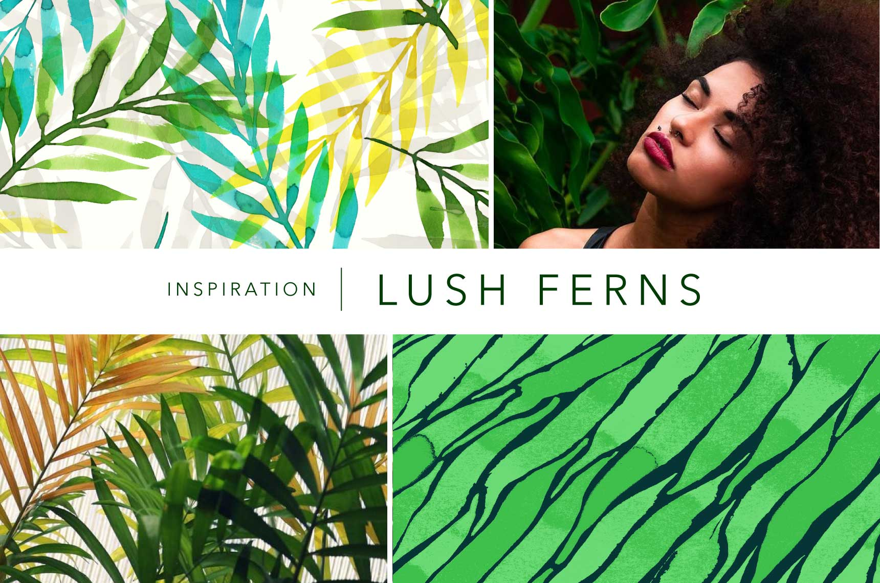 Prints featured - Top left: Layered Ferns. Bottom right: Water Waves.  Inspiration images via Pixabay.