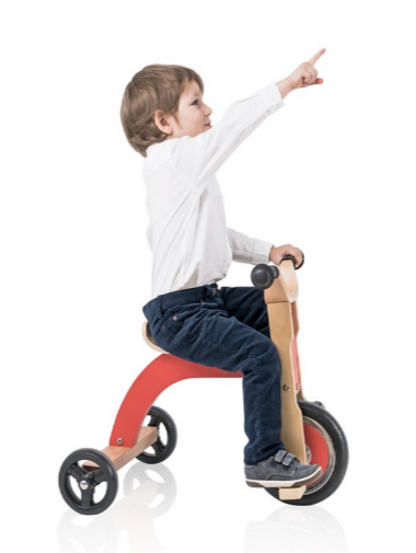 Tricycle-Case-Study_Small.png