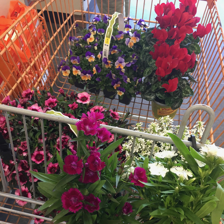 diy florist.