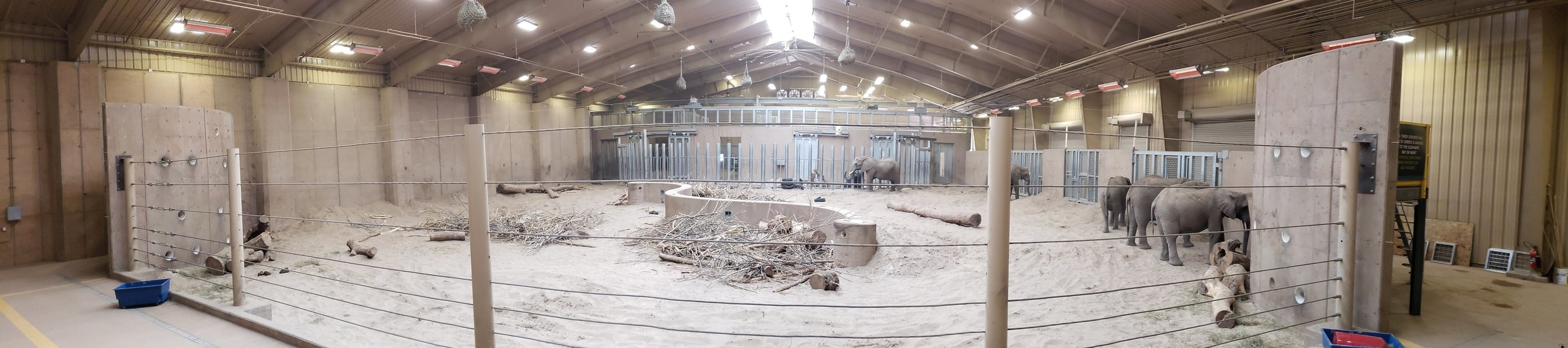 Nice, large, indoor, climate controlled play area for the elephants.