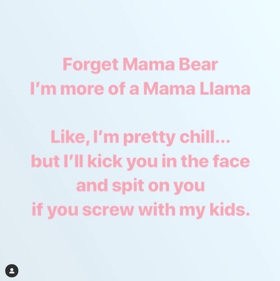 I am not a Mama Bear, I am not a Helicopter Mom…. I'm a Mama Llama