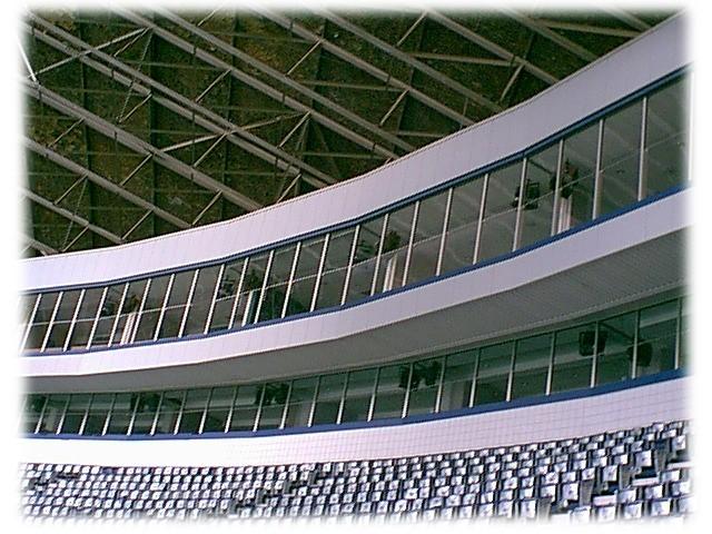 Texas Stadium Dallas Cowboys Irving, Tx.JPG