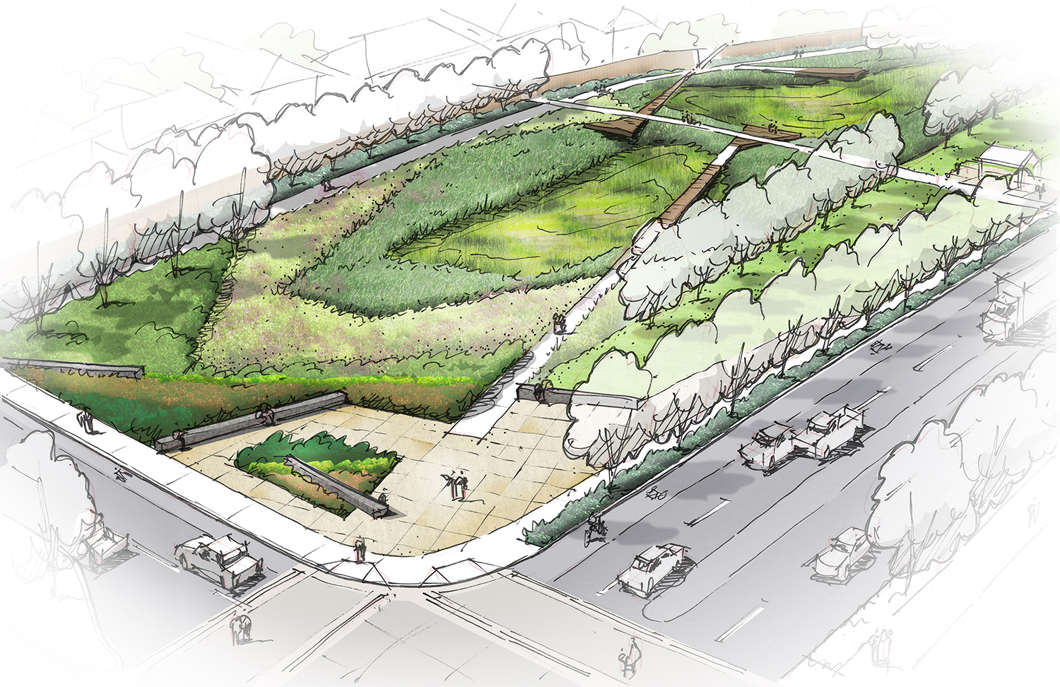 reed's crossing conceptual drawing of central rectangular stormwater greenspace with trails and homes surrounding