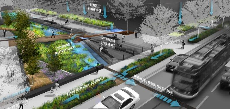 Stormwater is a main focus here at Greenworks. The Zidell Yards site offered us the opportunity to  identify solutions  for applying green infrastructure to manage stormwater on one of the largest brownfield remediation and redevelopment sites in Portland.