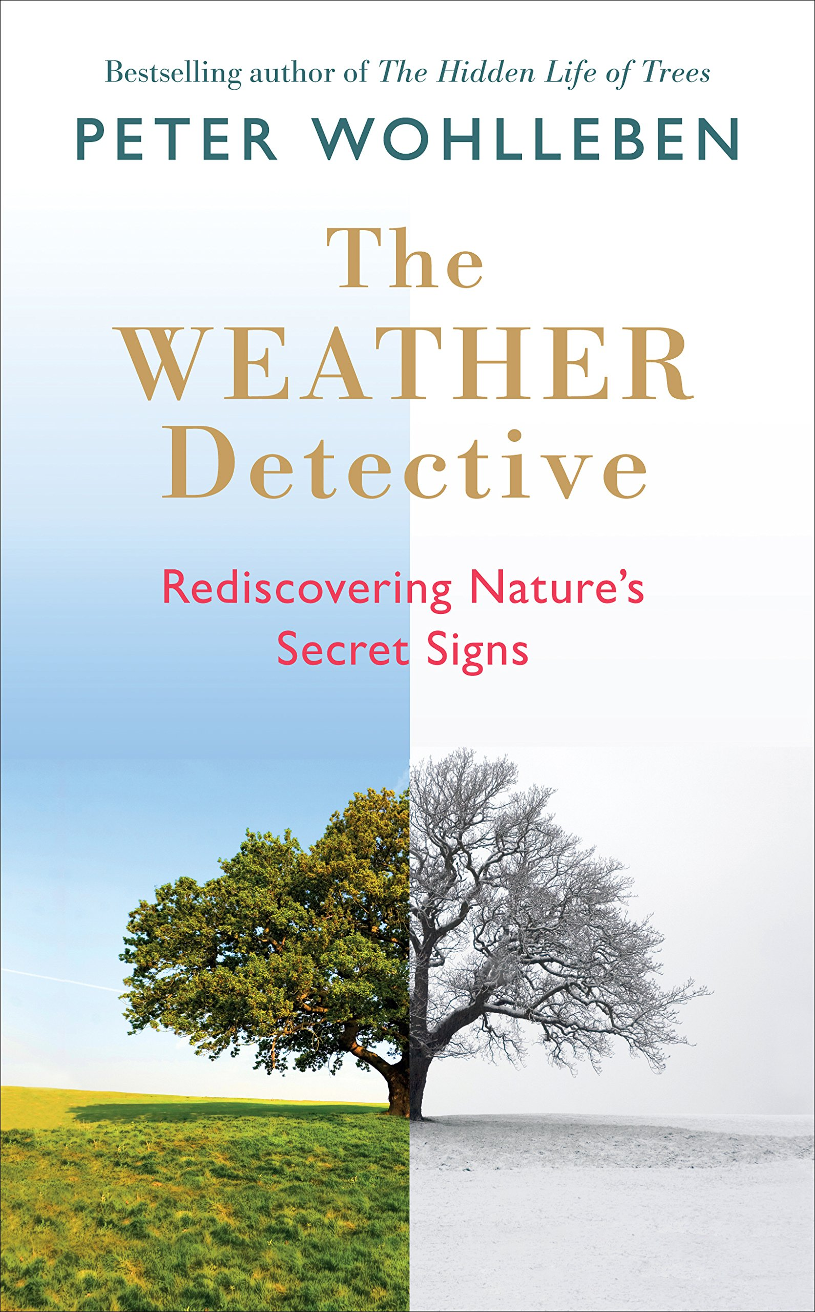 "The Weather Detective - by Peter Wohlleben""The Weather Detective calls attention to patterns in weather and in the world to help readers connect with the natural environment. Wohlleben advocates for interacting with and observing nature from a broad atmospheric-scale down to the scale of your garden. This book also reminds us urban busy bodies to take pleasure in time spent outdoors and relaxing outside.""- Margot Halpin, Landscape Designer"