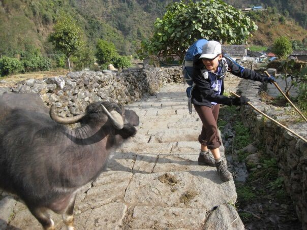An eager new friend made while hiking the Annapurna Circuit in Nepal