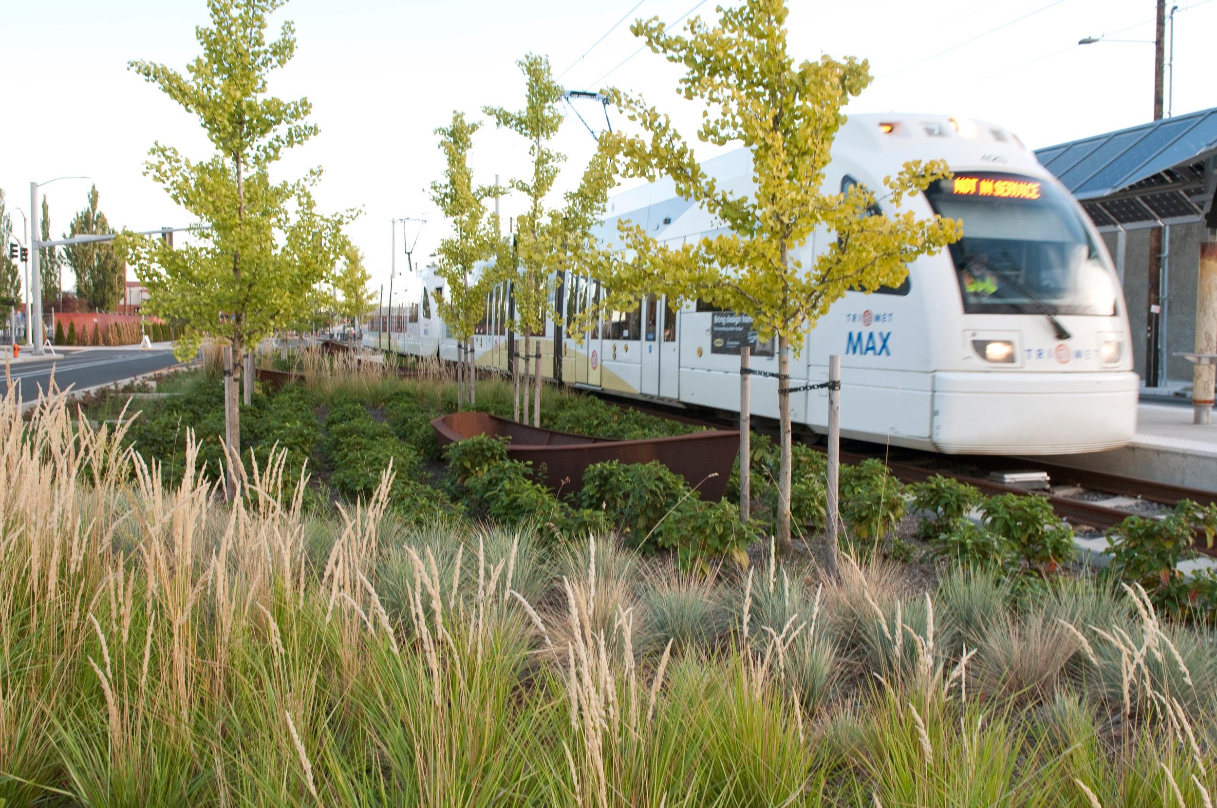 Trimet Train Passing Through Stormwater Planter