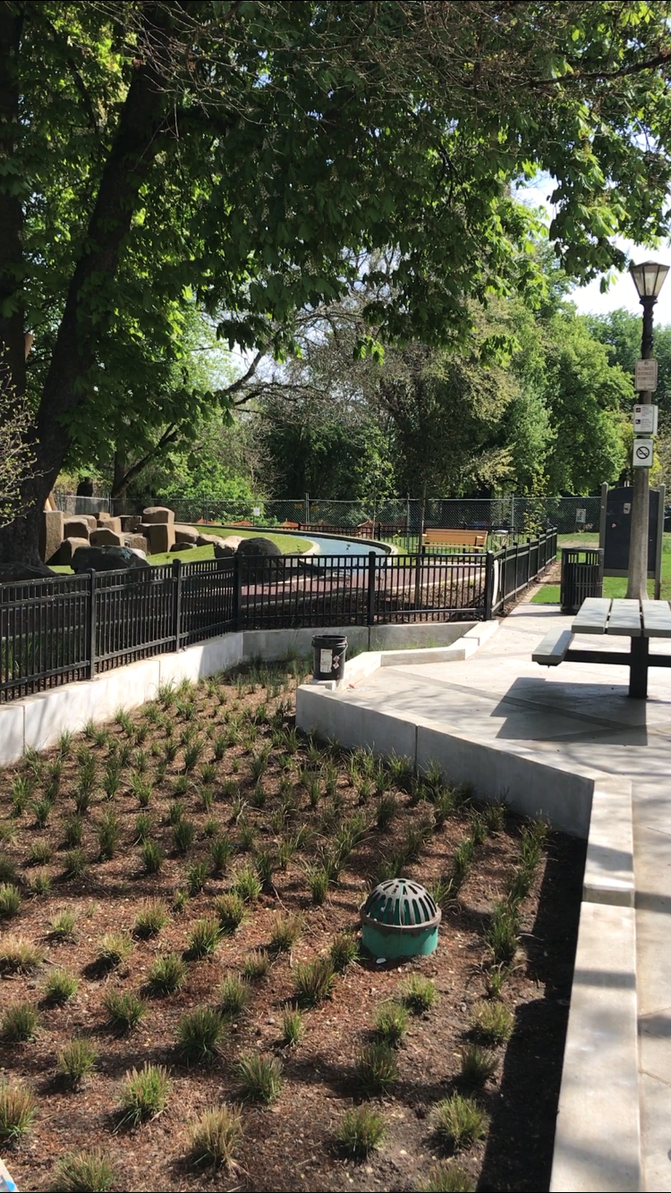 Couch Park Plaza with Bioswale and Surrounding Fence