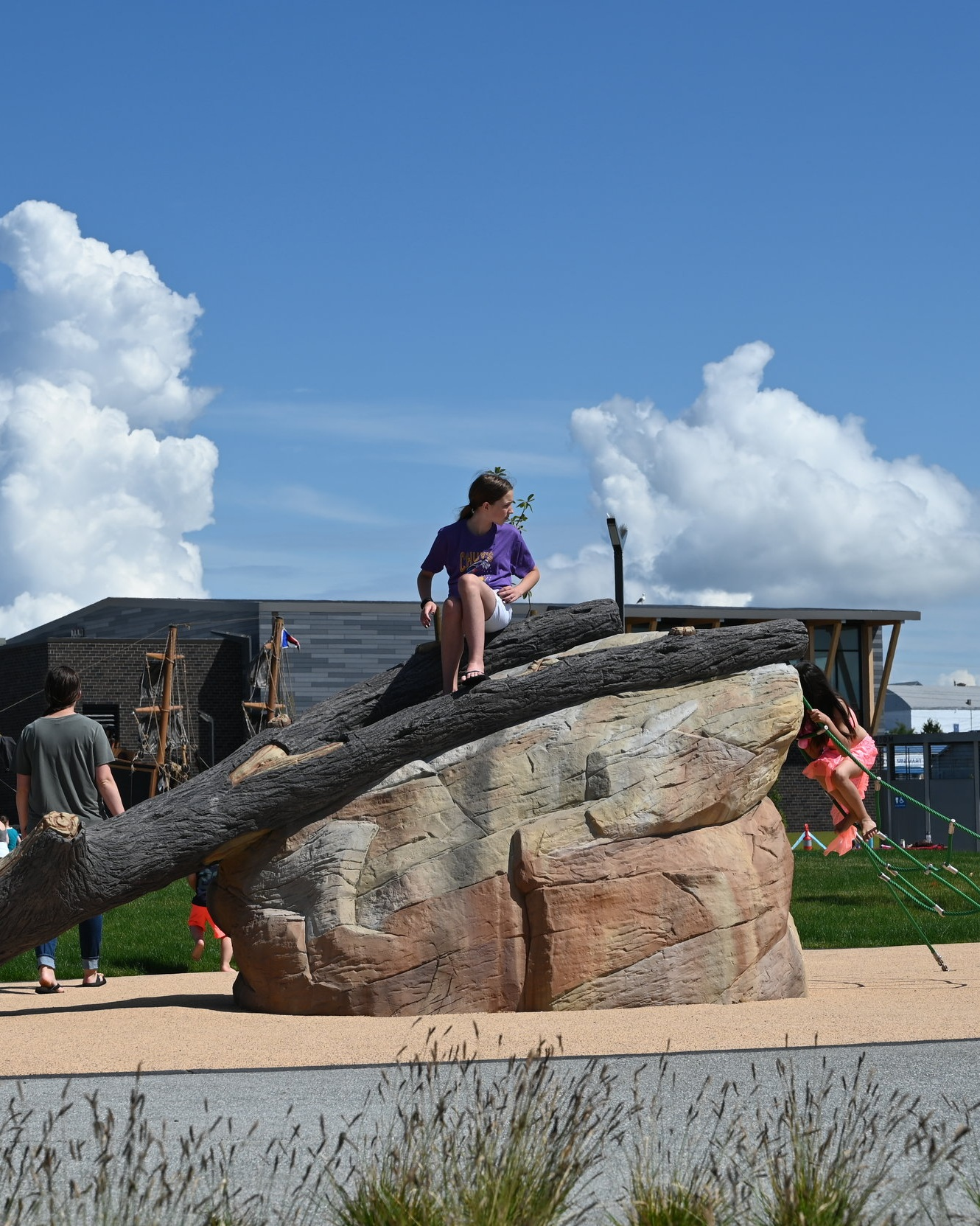 children playing on natural logs and artificial logs