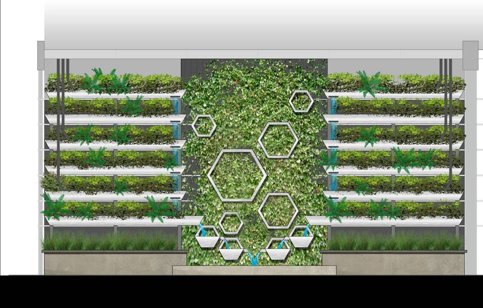 Illustrated computer generated sketch showing future green wall with sedge basins