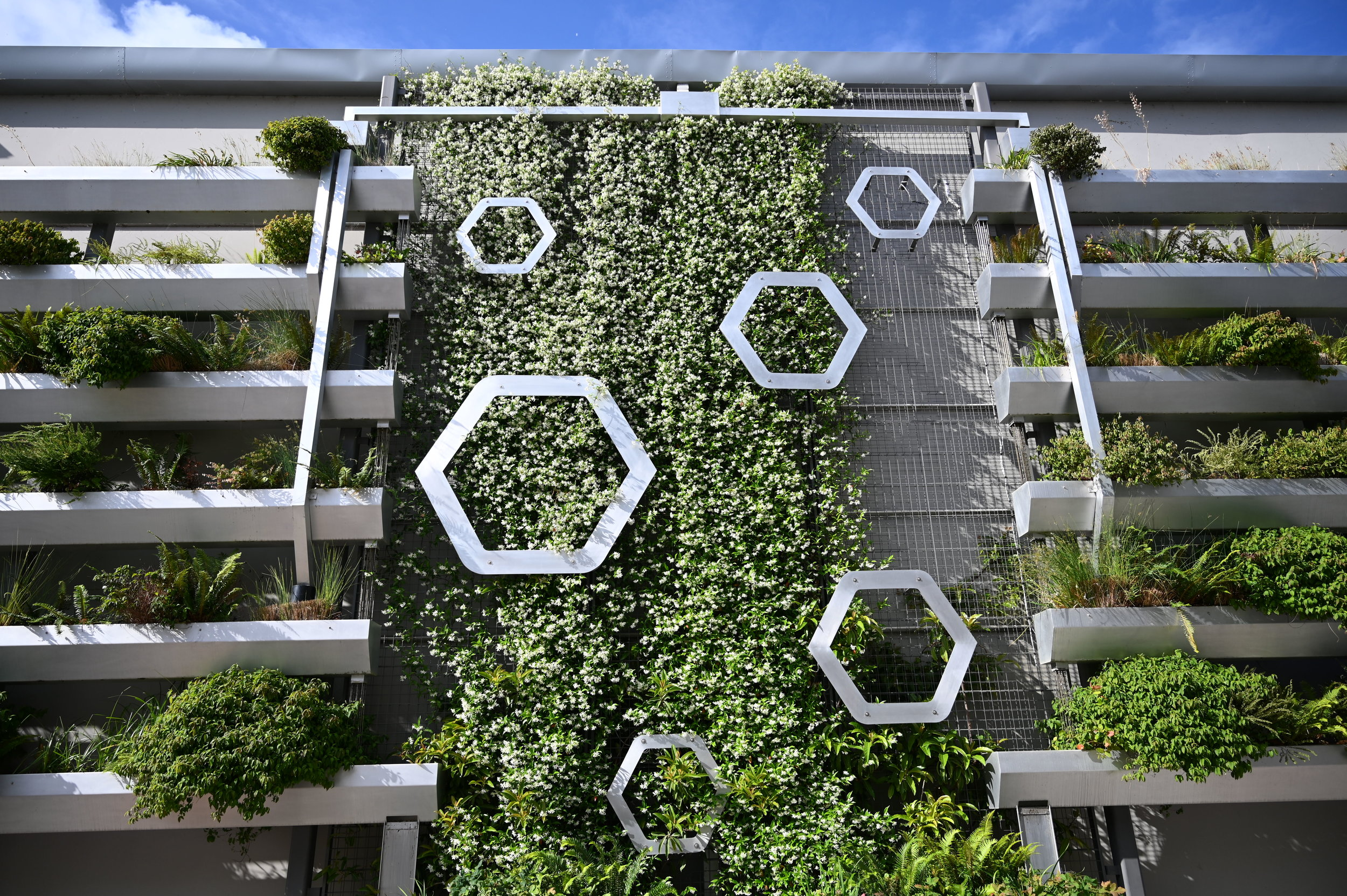 Two Story metal structure with hexagon shapes and basins filled with verdant plants