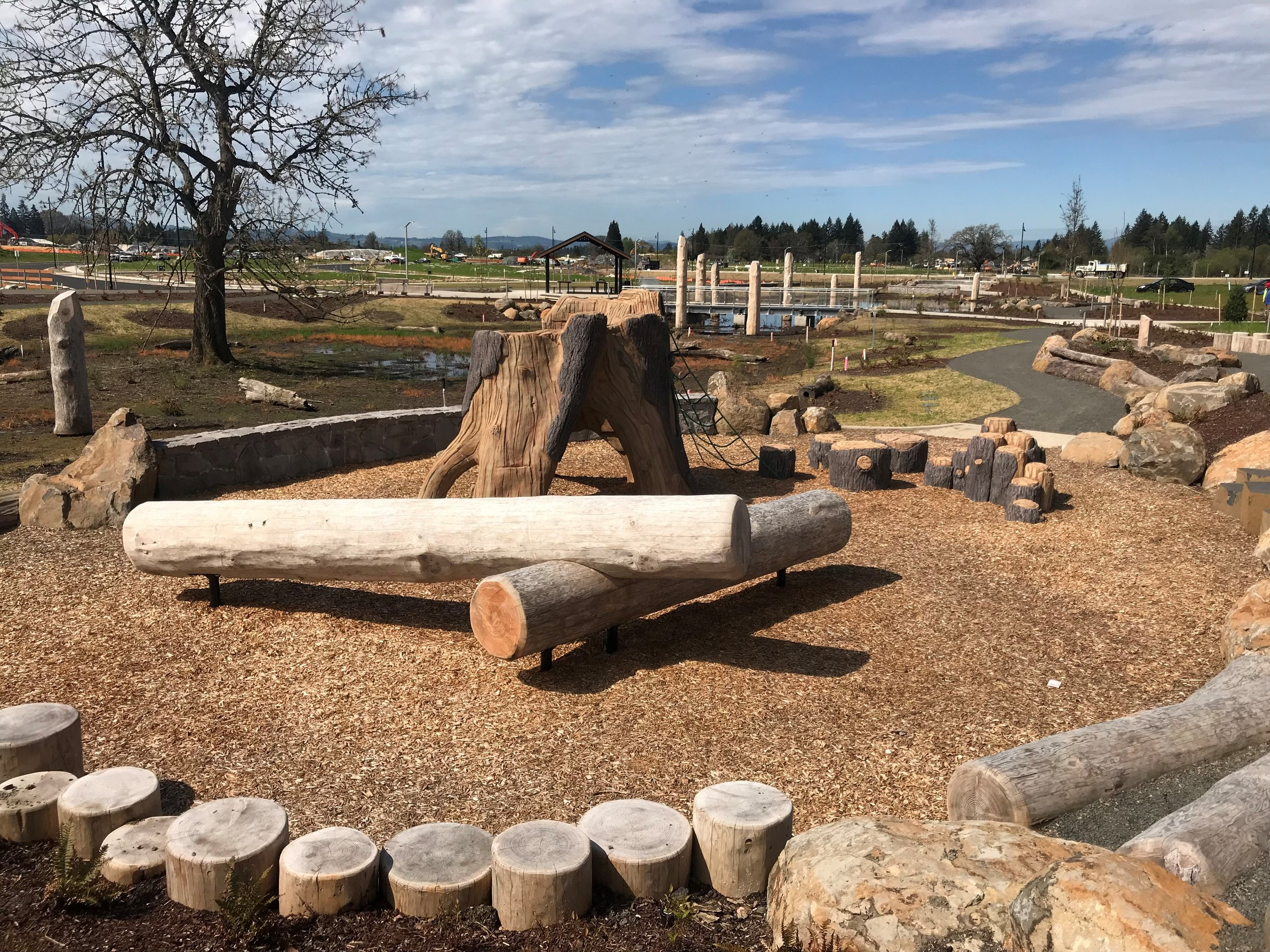 logs and stumps form a playground in front of a dormant oak tree