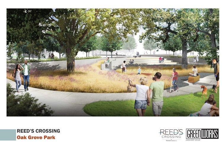 visualization of people enjoying meadow with mature oak trees