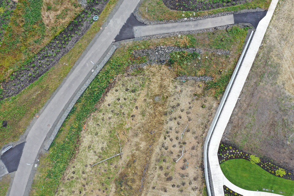 plan view birdseye view from drone of trails framing grasses and sedges from 200 feet up