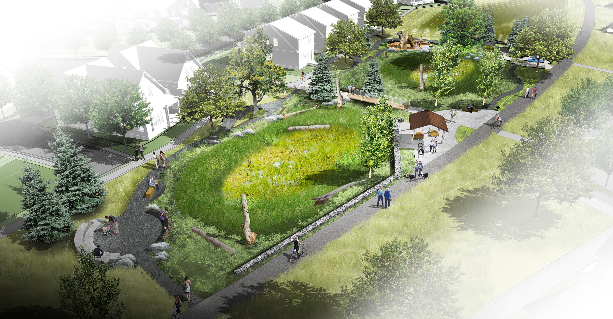 illustration of basin for stormwater management as a rain garden