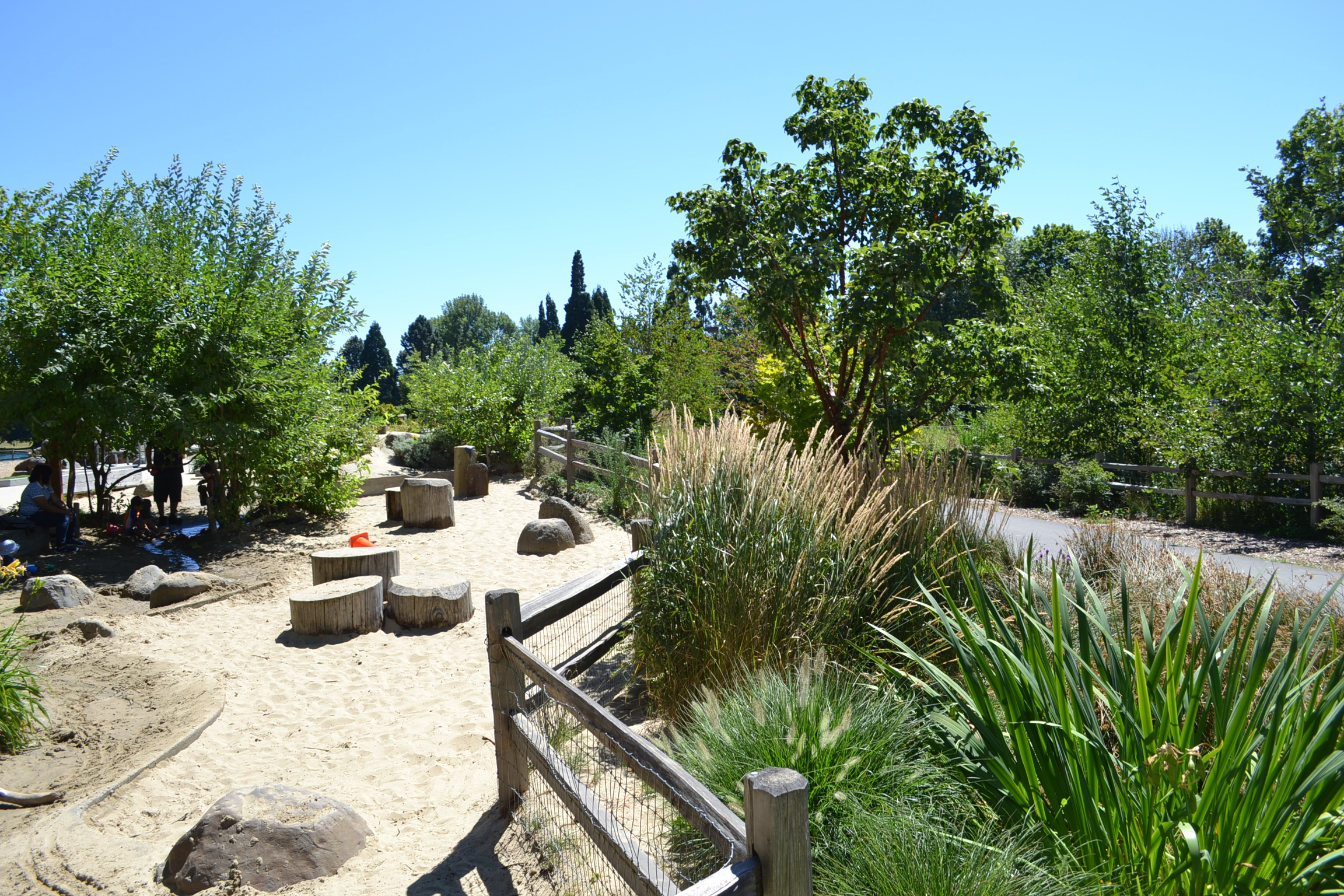 mature plants and a sand play area separated by a wood fence on a sunny day
