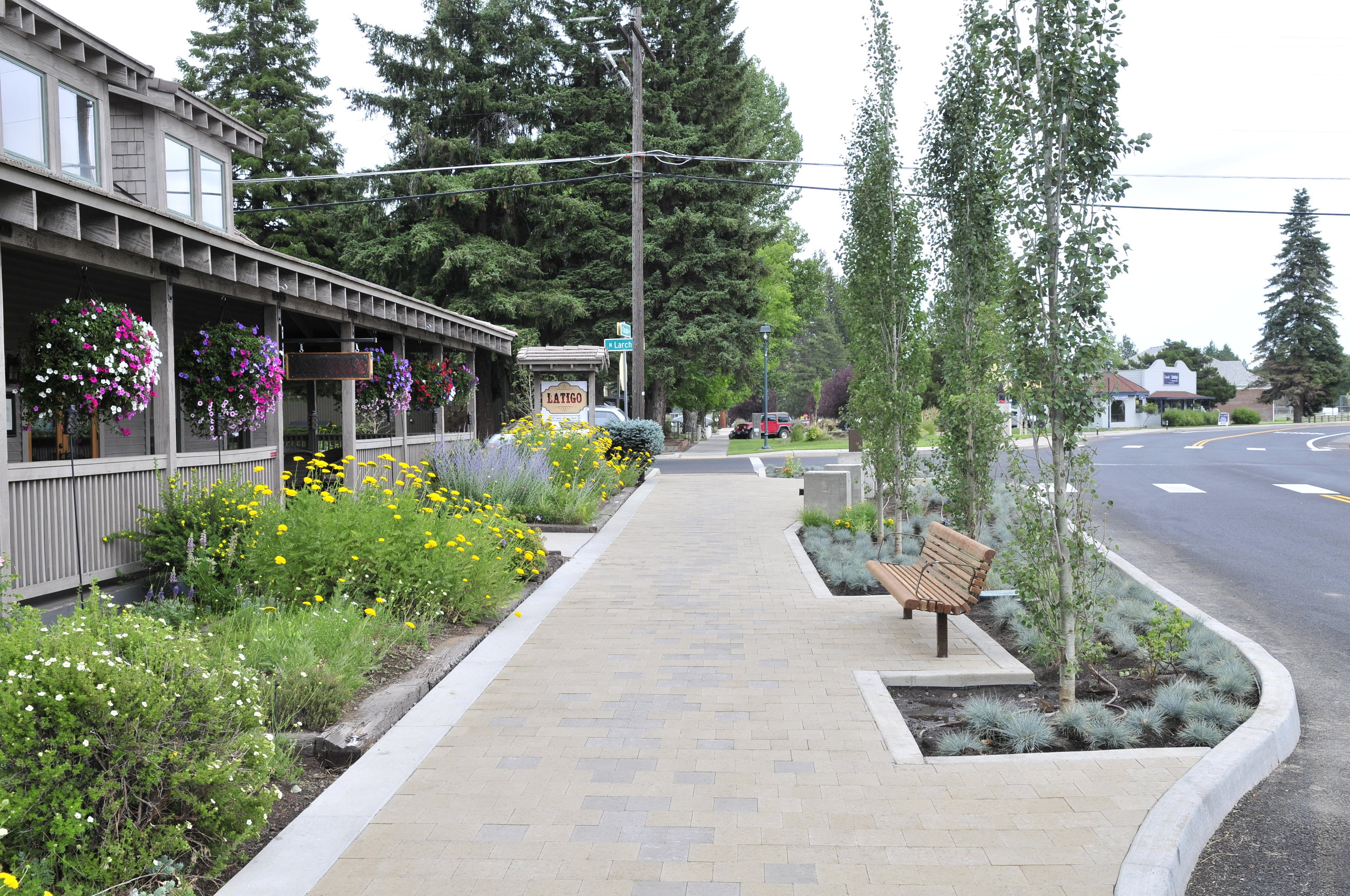 blooming flowers, aspen trees, and a bench line a sidewalk along cascade avenue in Sisters