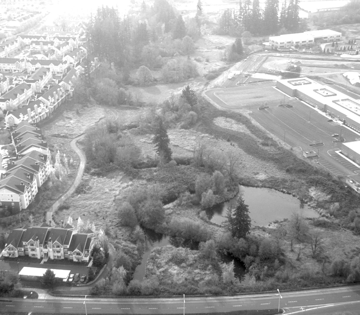 black and white image from airplane, ponds and stream amidst track homes
