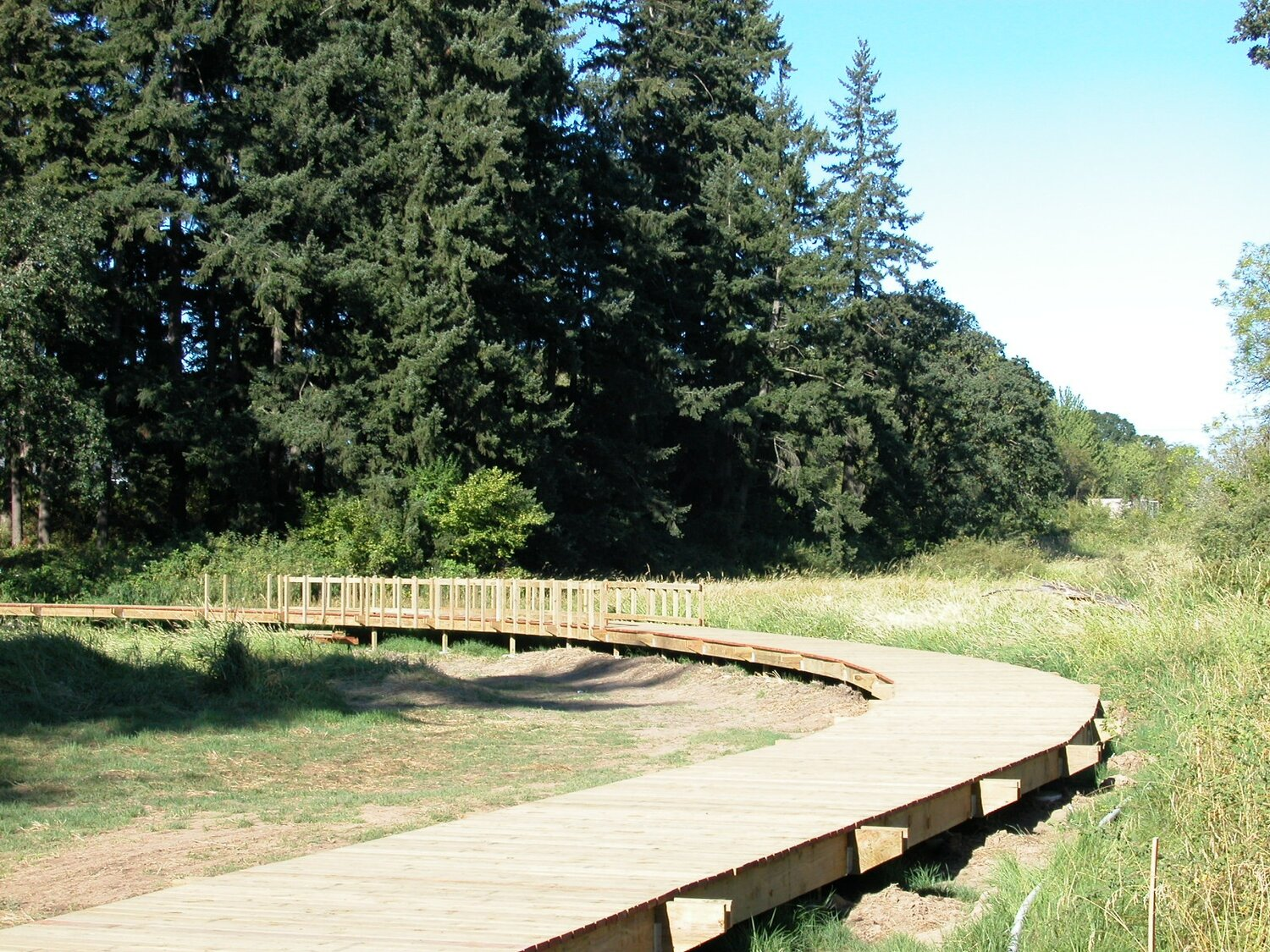 newly built boardwalk in field, curving away into the distance, sunny day