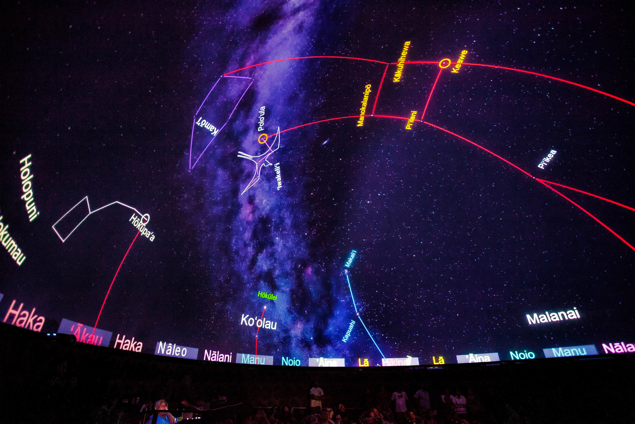 Planetarium Starlines.jpg