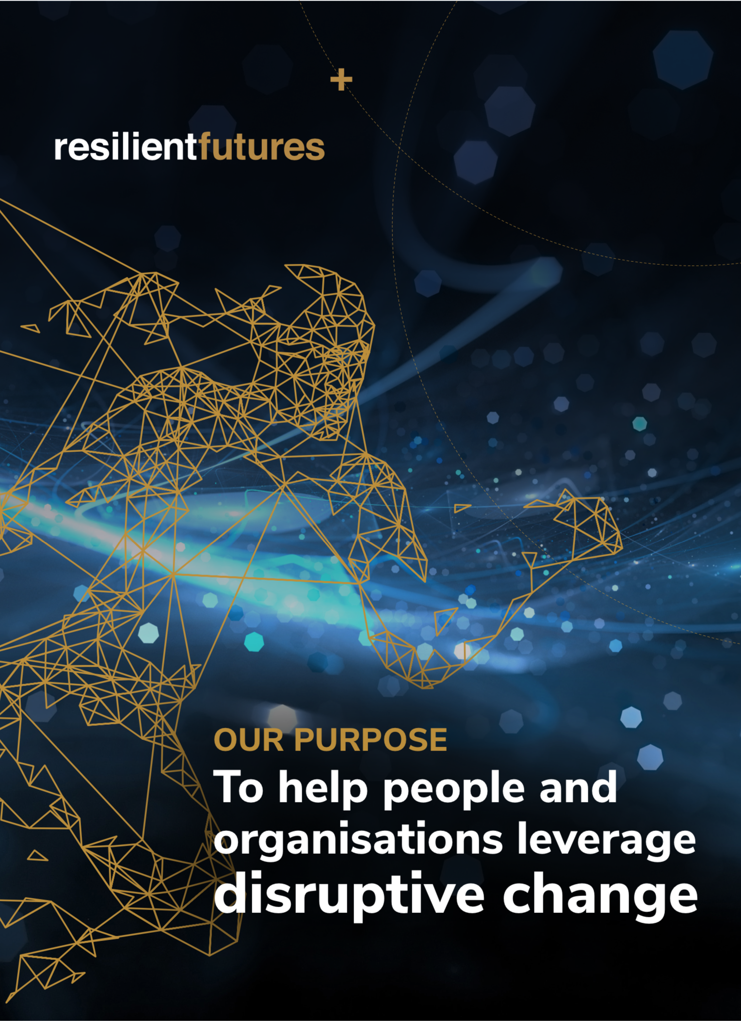 2019 OVERVIEW - For a concise overview of Resilient Futures, click here to download our 2019 overview document.