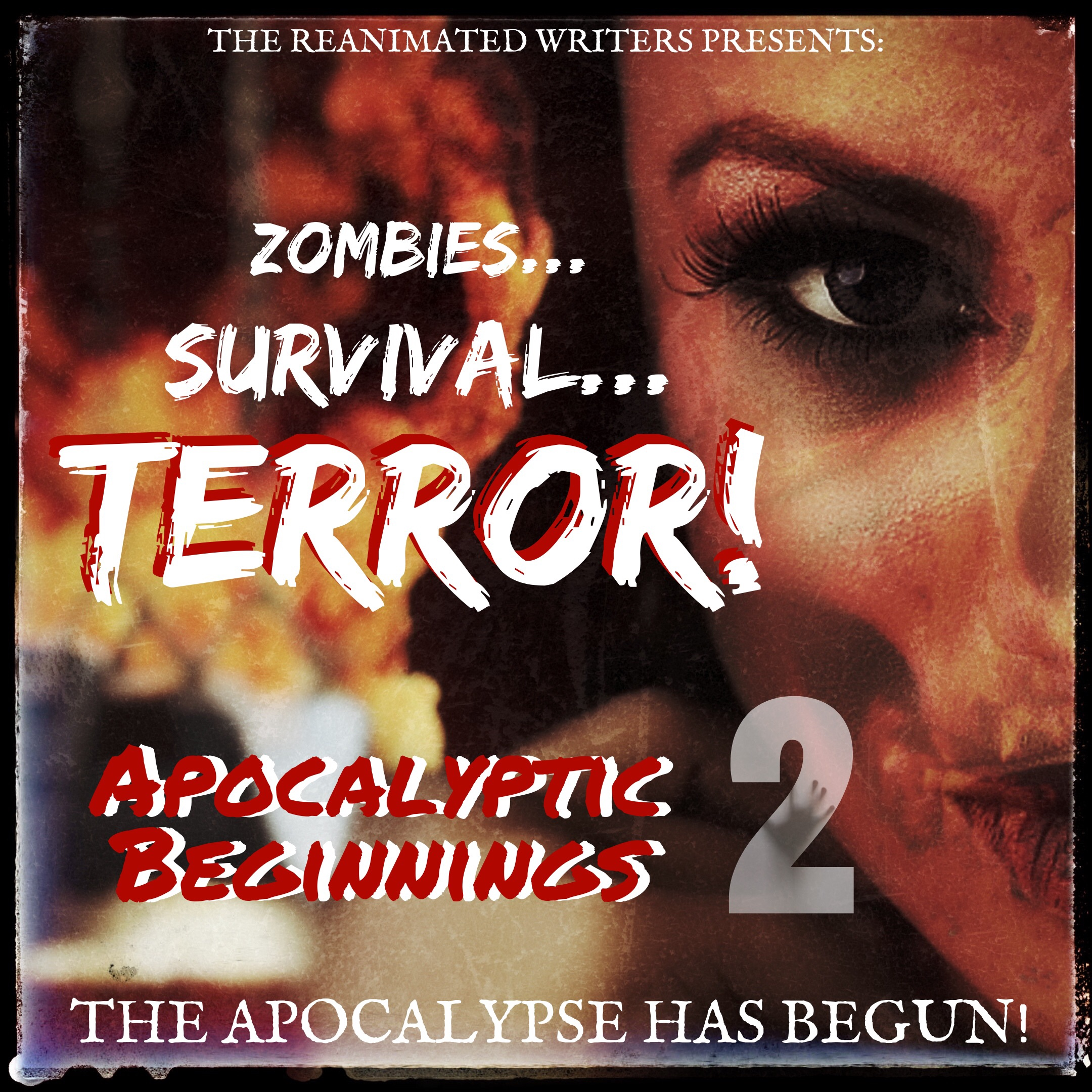 9 epic zombie novels in one collection! Get  Apocalyptic Beginnings 2  Today!