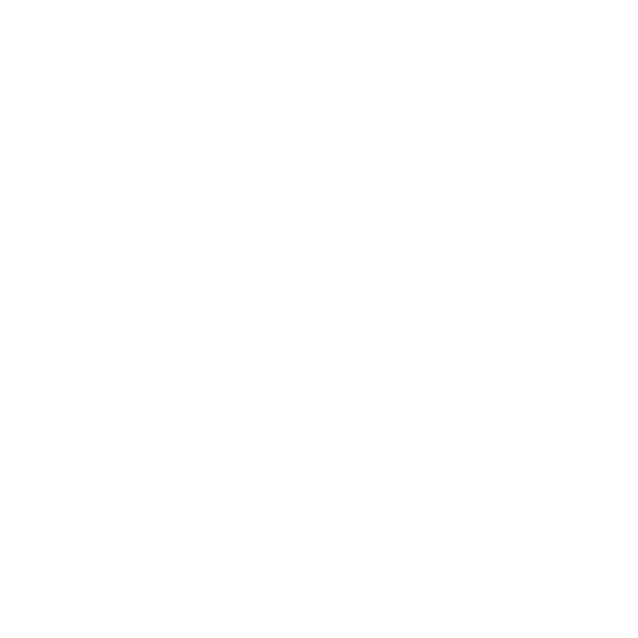 EVERYTHING HAS BEAUTY.png