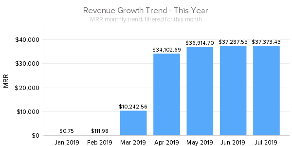 Revenue_Growth_Trend_-_This_Year july 2019.png