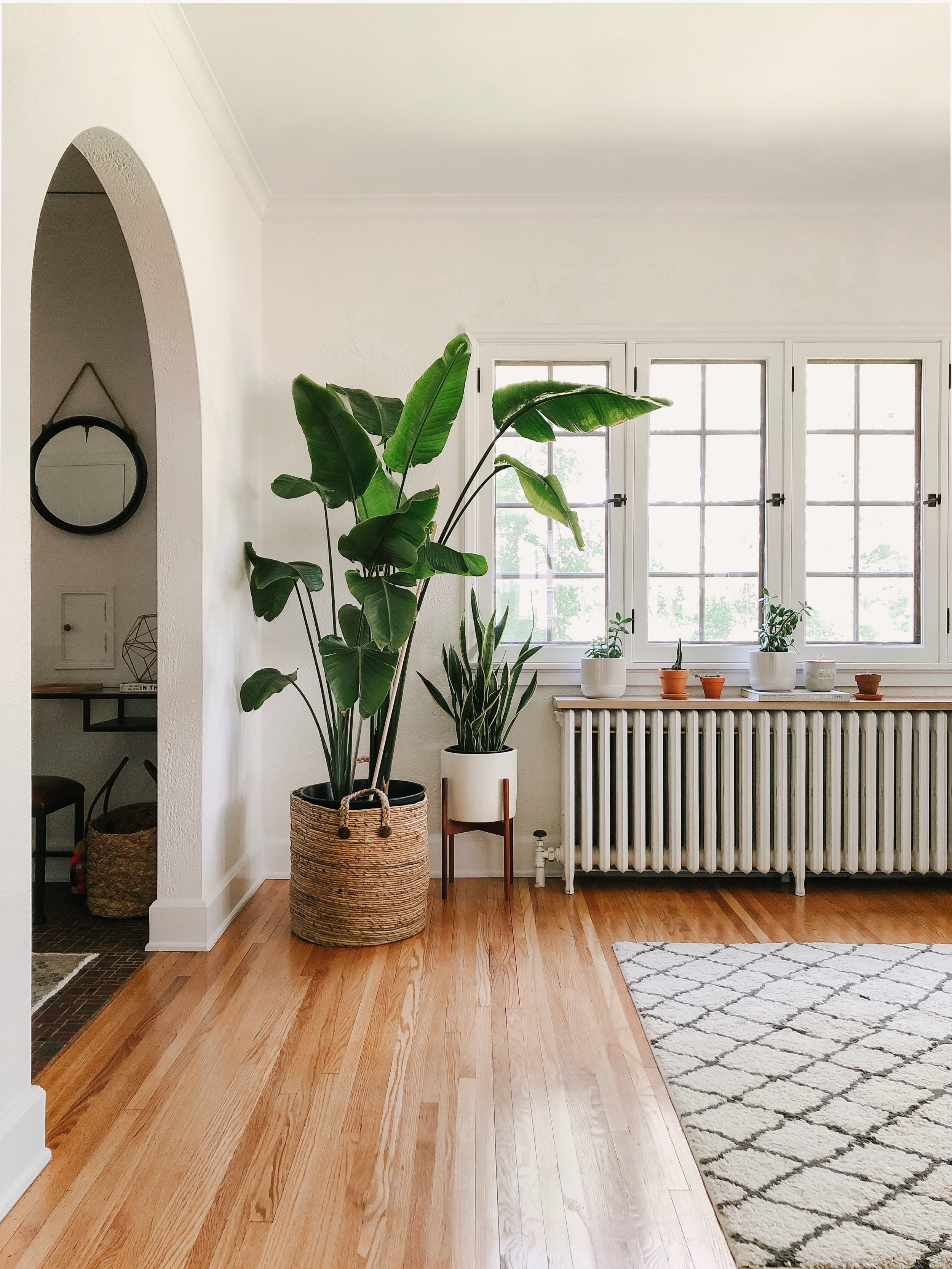 similar baskets  here    similar plant stand  here