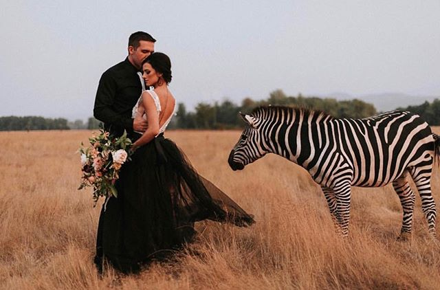 "Sometimes I have to pinch myself that I get to have a ""job"" I love so much.  I mean seriously, it just keeps getting cooler 🦓🖤 Photo: @nicolebriannphoto  Makeup: Yours Truly Hair: @hair_by_alex.radekin  Florals: @alibdesigns  Dress: @sweetcarolinestyles  Models: @pnwloversandlace"