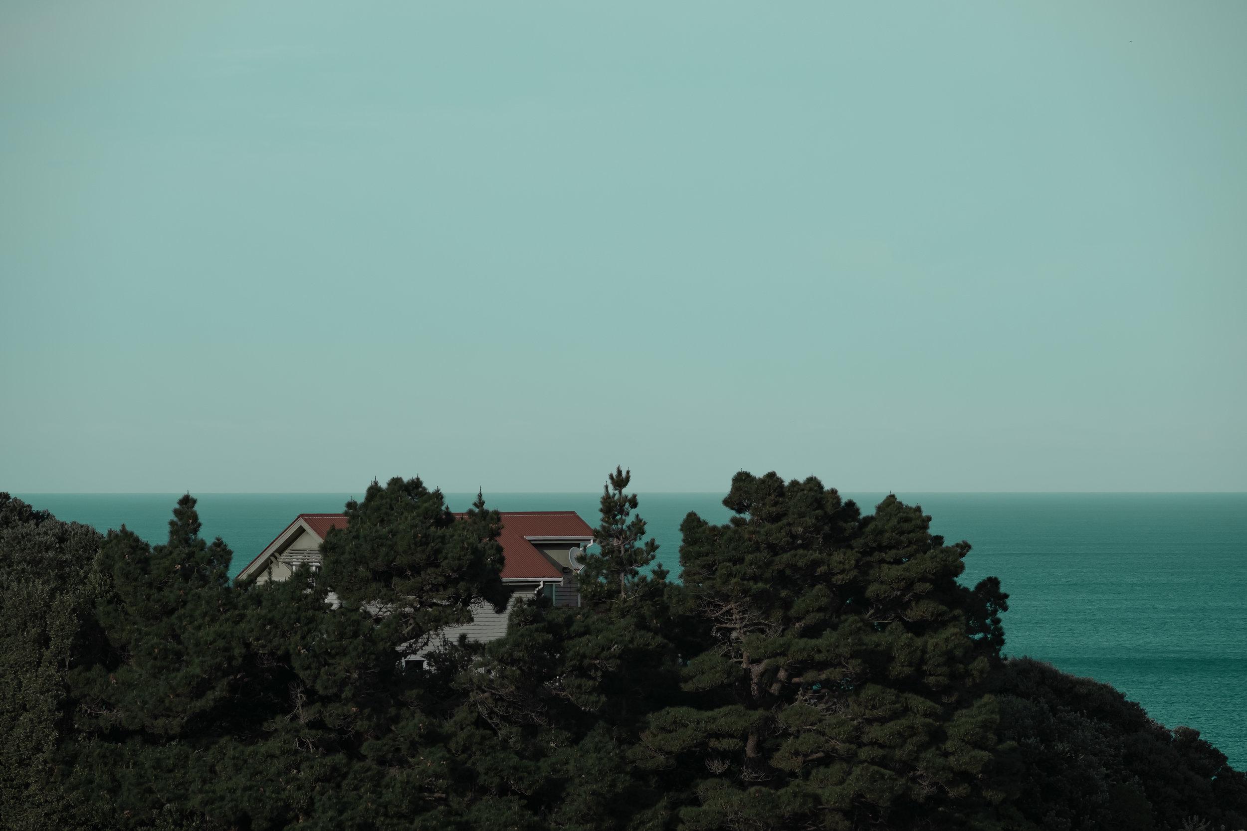 house in trees-4.jpg
