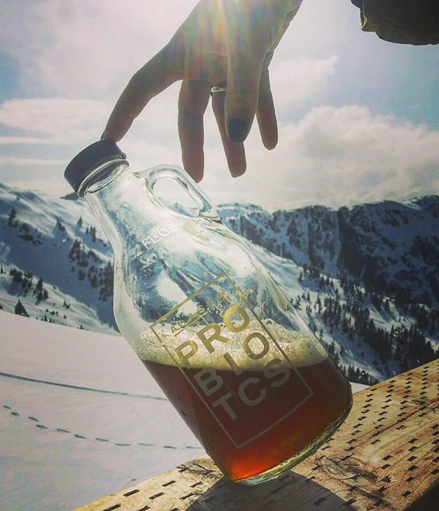 Leaning toward winter? Leaning toward summer? Who knows these day but Gustavus Fields #kombucha is all season long refreshing ☀️ 🎿 - - Brewed with @sentinelcoffee spearmint/yarrow #greentea blend harvested in Gustavus, Alaska, #organic #rosemary, Organic #peppermint, and organic #sage