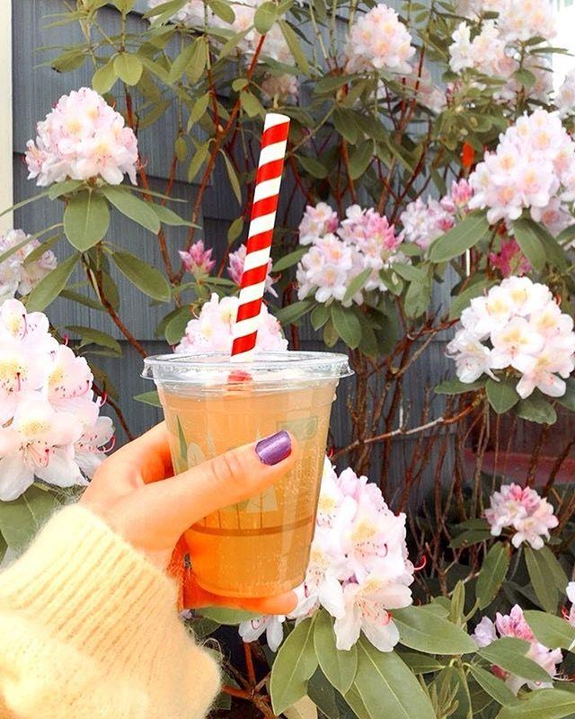 Peach Turmeric #Kombucha! On tap @juneaurainbowfoods ☀️thank you Rainbow Foods for using compostable cups and paper straws💛 - - -Brewed with fresh pressed #turmeric root from Kauai, and white peach blossom tea. - - - #nojuice #lowsugar #antioxidants #probiotics #raw #organic #happy 📸 @shellslikearainbow