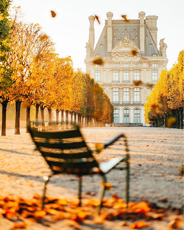 FALL IS COMING 🍂 Slowly entering into my favorite season aka the golden season ! Can't wait to capture the city surrounded by brown and gold leaves 😍 I took this shot yesterday during a lovely morning session at the Tuileries garden. The leaves are not totally brown yet so we decided to fake Autumn mood by playing with some dead leaves ahah ! Hope you like it ! Who else is ready for Autumn season ?